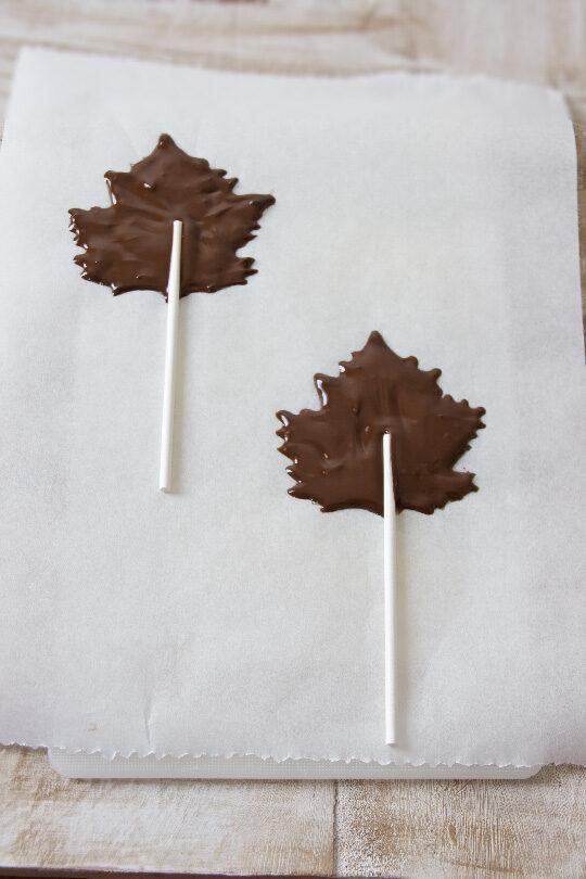 hojas-de-chocolate1-9680957